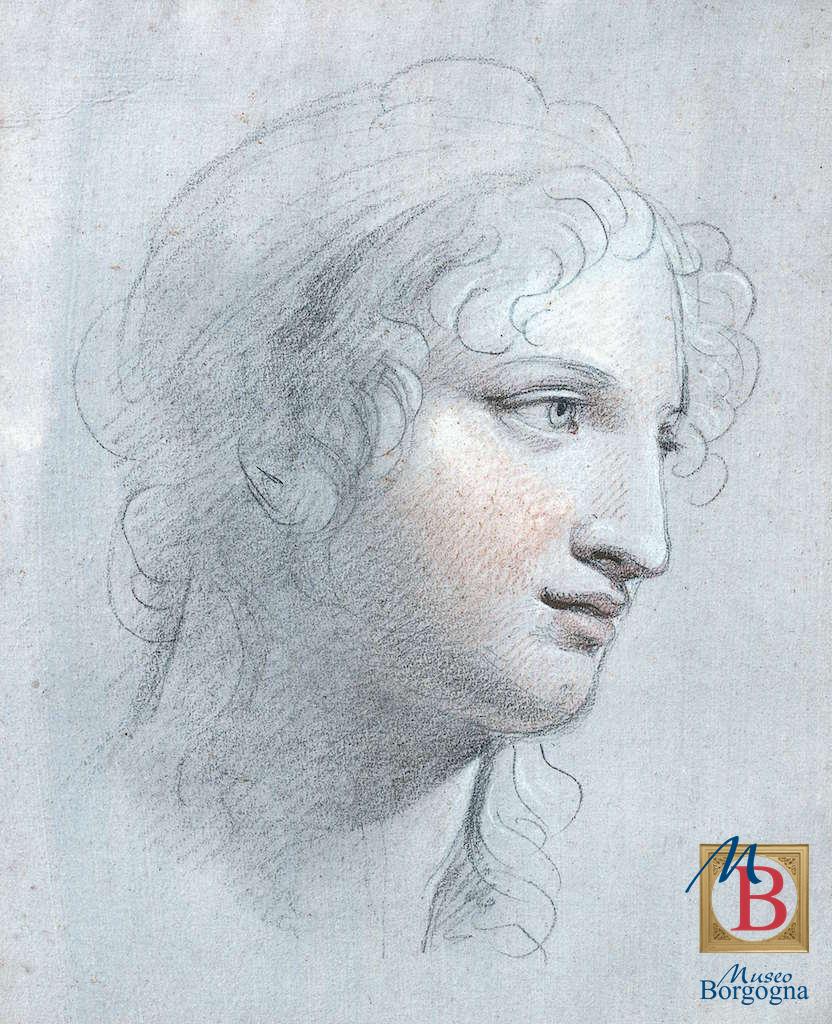 museo borgogna grafica andrea appiani