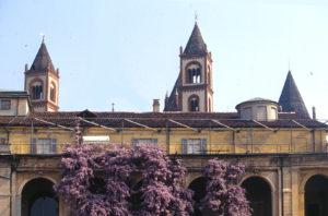 Museo Borgogna, Vercelli, alberi monumentali, Gran Tour, glicine Sant'Andrea