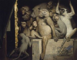 Scimmie Alte Pinakothek, Monaco